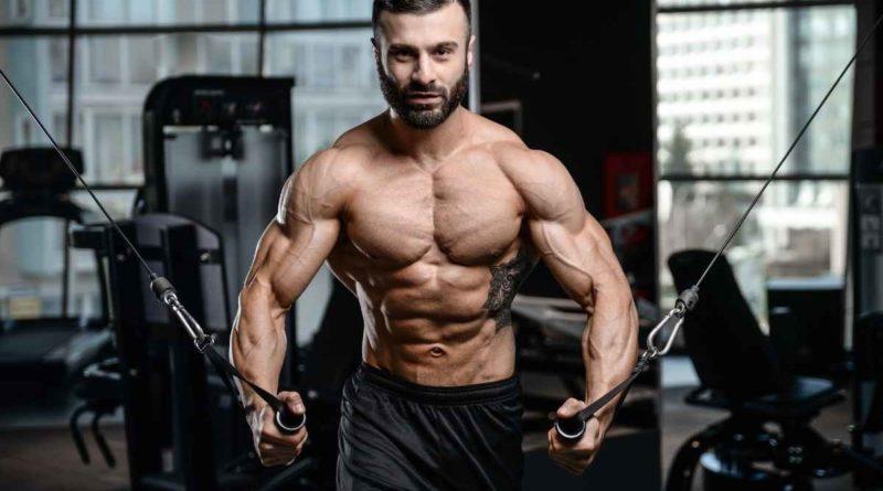 musculos-dicas-para-ganhar-ou-reforcar